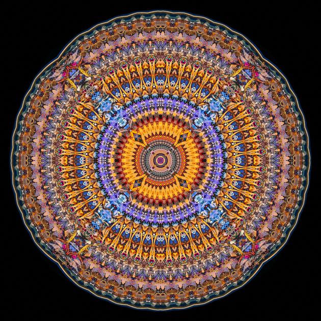 Family-Synergy-MandalaStephen-Calhoun
