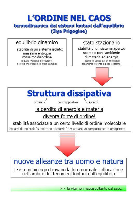 Struttura+dissipativa